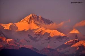 alba nepal