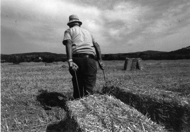 Chiusi: è morto Alvaro Della Ciana. Quando mezzadri e contadini divennero classe dirigente