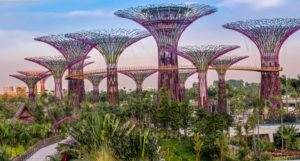 Singapore supertrees 1