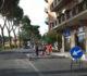 Gli ulivi della Puglia e i pini di Chiusi e Città della Pieve: quando si fa la festa all'albero