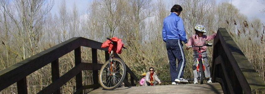 Castiglione del Lago: 800 mila euro per rifare la pista ciclabile finita sott'acqua… Ma c'è chi dice no: meglio cambiare percorso!