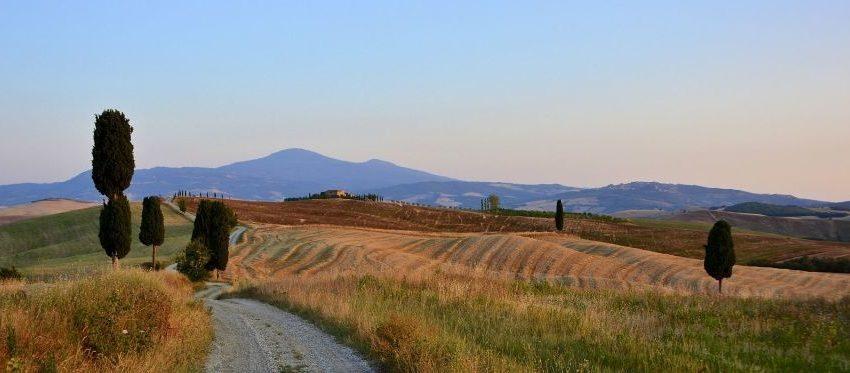CENTRALE A BIOMASSE DI GALLINA: SORGENIA PRECISA CHE NON E' PIU' SUA DAL 2014